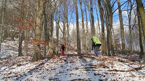 14-ortel-cesta-lesem.JPG