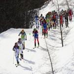 vertical_race